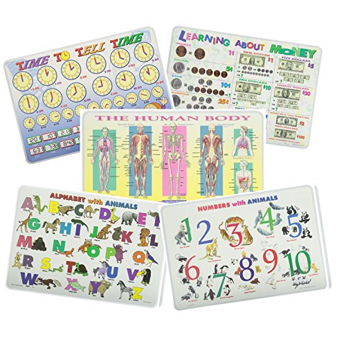 Painless Learning Educational Placematsfor Kids Alphabet, Numbers, Telling Time, Money, The Human Body Laminated Washable Reversible Activities Set of 5