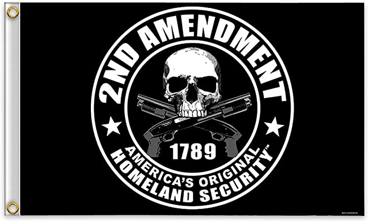 3x5 2nd second Amendment America/'s Original Homeland Security 1789 Skull Flag