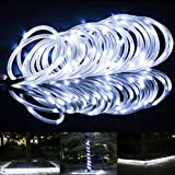 LTE Solar Power Rope Lights, Waterproof, 23ft, 50 LED,6000K, String Light, Portable, with Light Sensor, Decoration, Christmas Tree, Thanksgiving, Wedding, Party, Garden, Lawn, Patio (Daylight White)