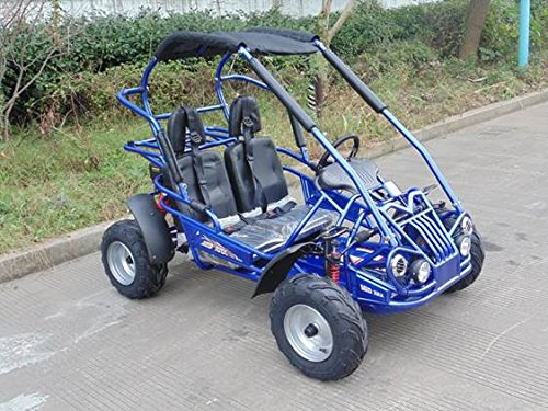 (TRAILMASTER XRX-R MID-SIZE 200cc KIDS GO KART with REVERSE BLUE)