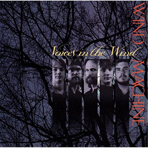 Voices in the Wind (Best Audiophile Jazz Albums)