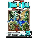 Dragon Ball Z, Vol. 22: Mark of the Warlock