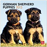 German Shepherd Puppies 2013 Square 12X12 Wall (Multilingual Edition)