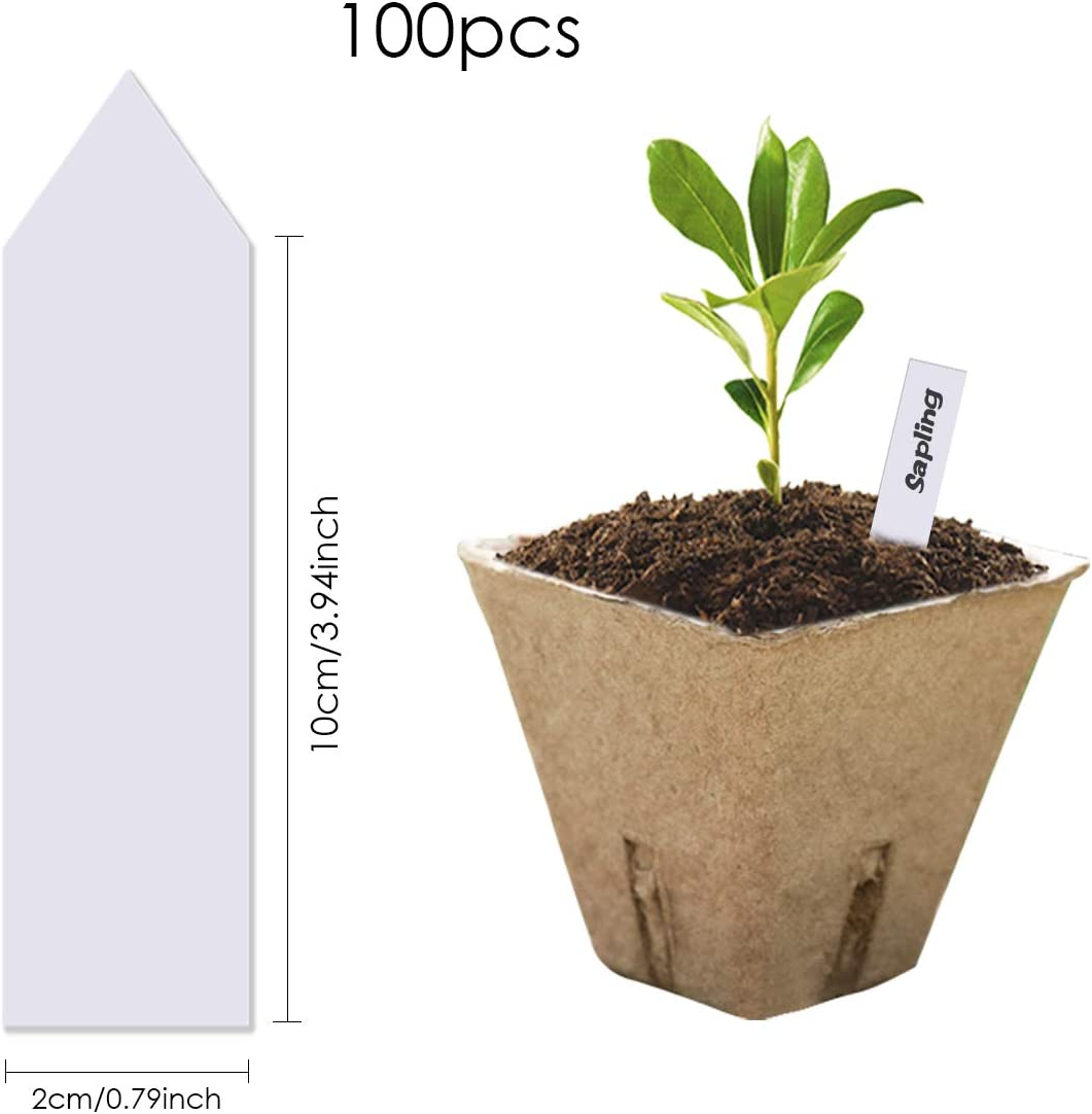 NON Vassoio di Avviamento per Semi Vasi di Torba Vassoio di Germinazione Semi di Ortaggi Vassoi per Piantine di Piantine 100 Pacco Kit di Avviamento per Semi Biologici Ecologico