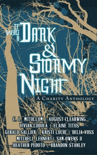 Book cover from It Was A Dark & Stormy Night: A Charity Anthology (Cliches For A Cause) (Volume 1) by August Clearwing
