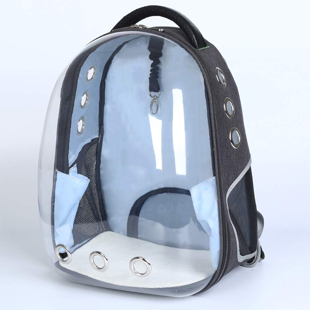 BenchMart Transparent Portable Travel Pet Carrier, Fashionable Space Capsule Bubble Cat Dog Carrier Backpack, Breathable Carriers for Small Medium Cats Dogs (Green)