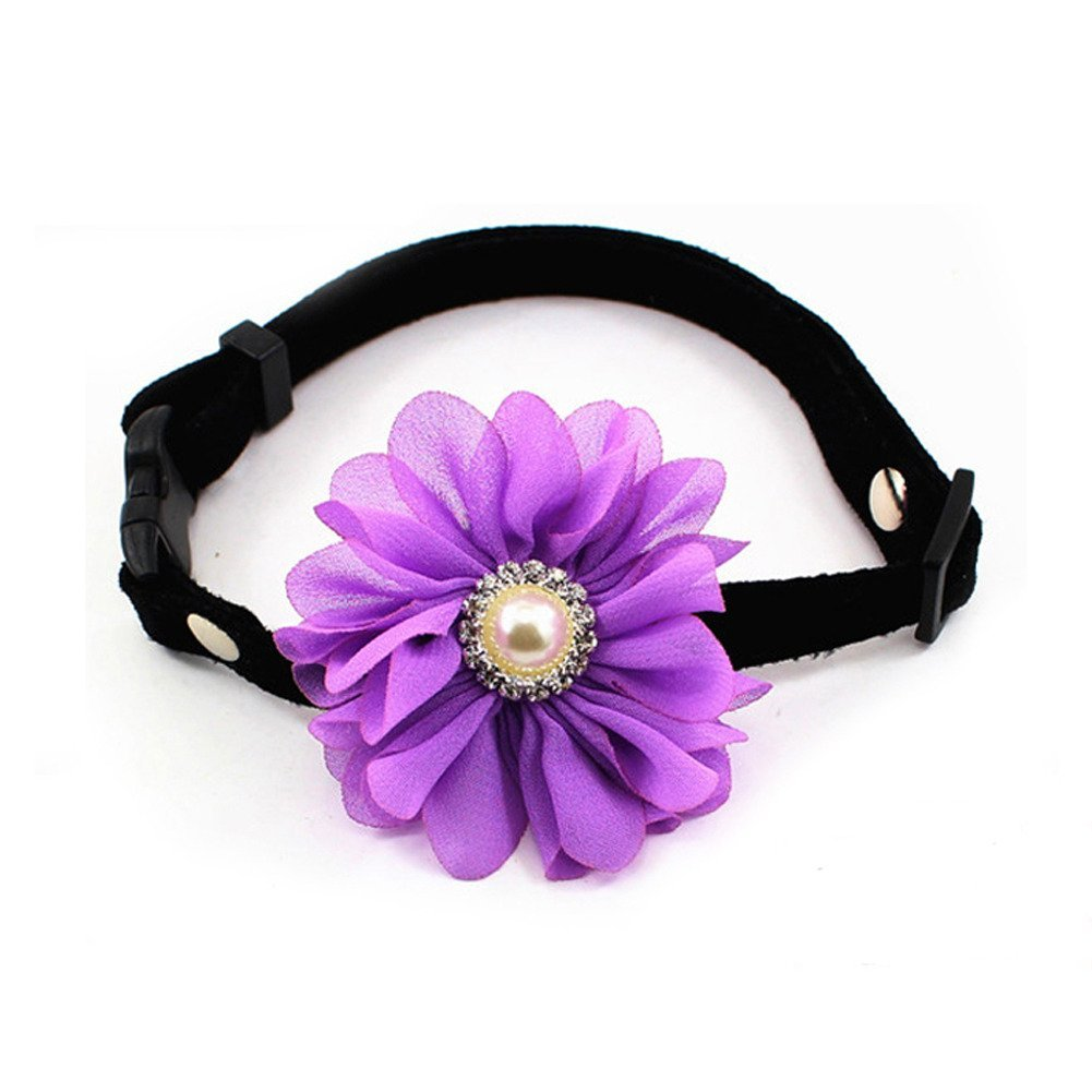 Purple Size XS Purple Size XS PetFavorites Designer Rhinestones Daisy Flower Charm Suede Leather Pet Cat Dog Bow Tie Collar Necklace with Pearl for Pets Cats Extra Small Dogs Female Puppy Yorkie Girl (Purple, Size XS)