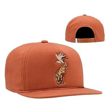 e6464da93cf60 Amazon.com  Coal Men s The Lore Hat Mid-crown Snapback Cap