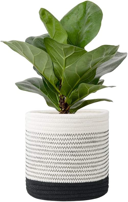 FairyLavie 8'' Cotton Rope Plant Basket, for 6'' - 7'' Planter, Reinforce Cotton Rope for Easier and Faster Shape Recovery, Multifunctional Basket Ideal Choice for Home Decor and Storage