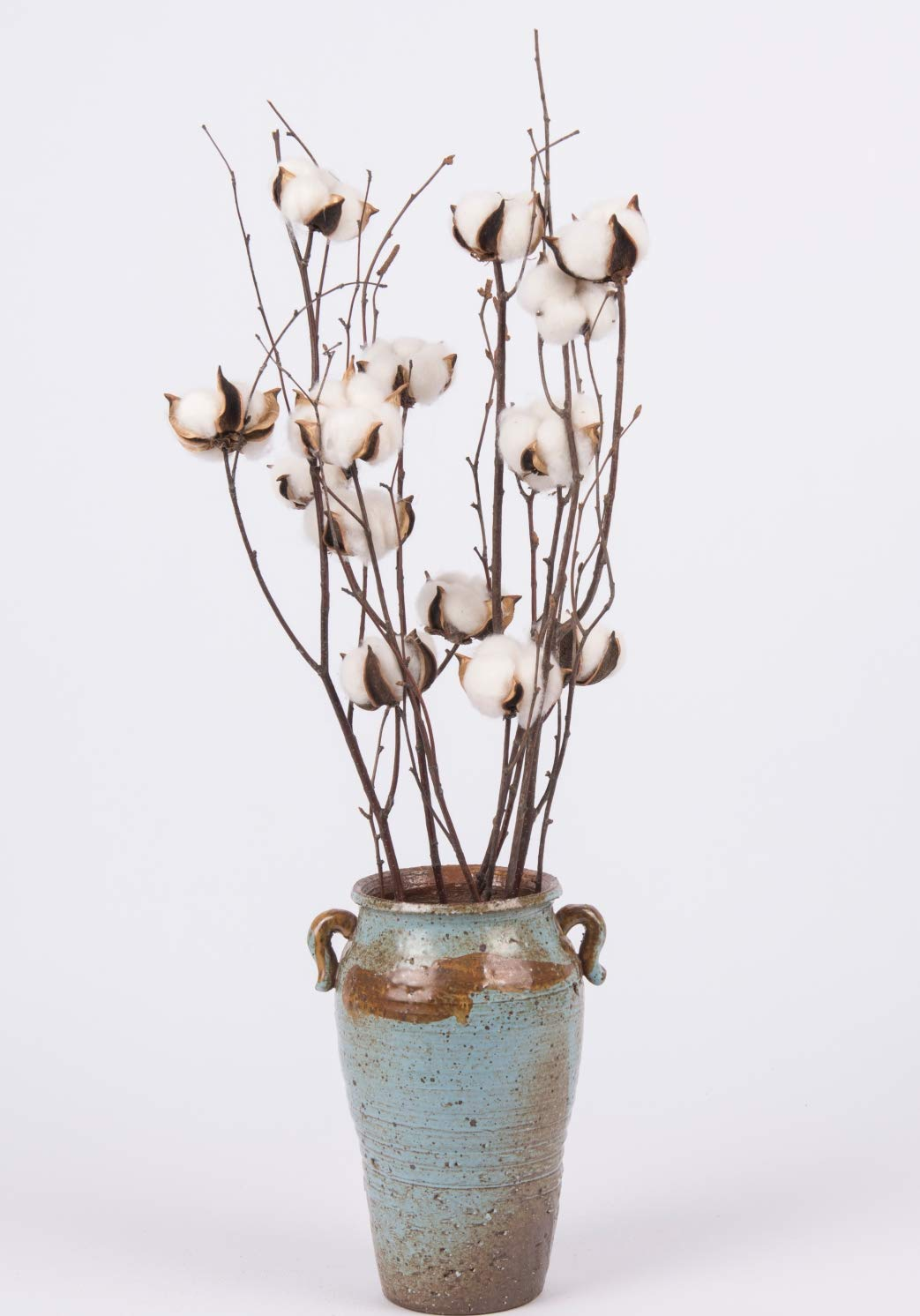 Dongliflower-Natural-Cotton-Ball-Bolls-with-25-Birch-Stem-Twig-Spray