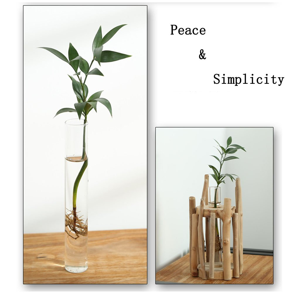 Anthree Vases for Decor Tall, Wood Vase Round for Centerpieces Clear Glass Vase for Flower by Anthree (Image #3)