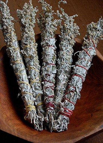 Sage Prairie (Prairie Sage Seeds (1600 seeds) incense campfire patchouli herb)