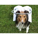Muffin's Halo Guide for Blind Dogs (XL)