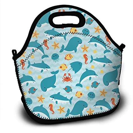7d137e93c744 Amazon.com - 100% Polyester Lunch Bag Insulated and Reusable Picnic ...