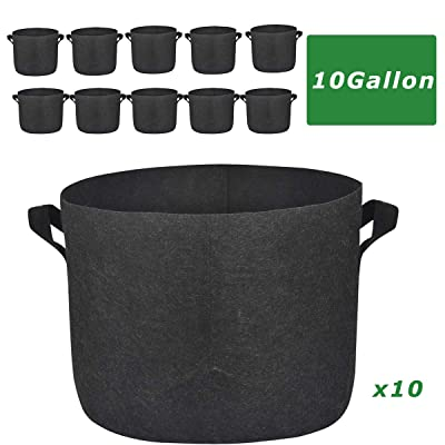 Kerrogee 10 Gallon Plant Bags, Nonwoven Thick Fabric Pot Bag with Handles, Vegetable/Flower/Plant Grow Containers for Indoor & Outdoor Planting, 10 Pack : Garden & Outdoor