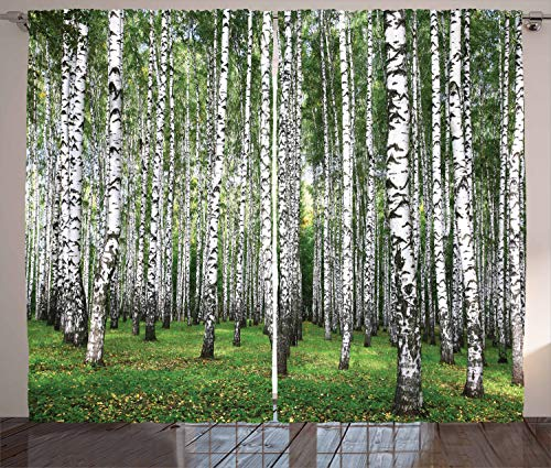 (Ambesonne Farm House Decor Collection, Autumn Trees in Birch Forest September Time View Picture, Window Treatments, Living Boys Girls Room Curtain 2 Panels Set, 108 X 84 Inches, Green)