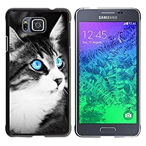 FU-Orionis Colorful Printed Hard Protective Back Case Cover Shell Skin for Samsung ALPHA G850 - Blue Eye Cat