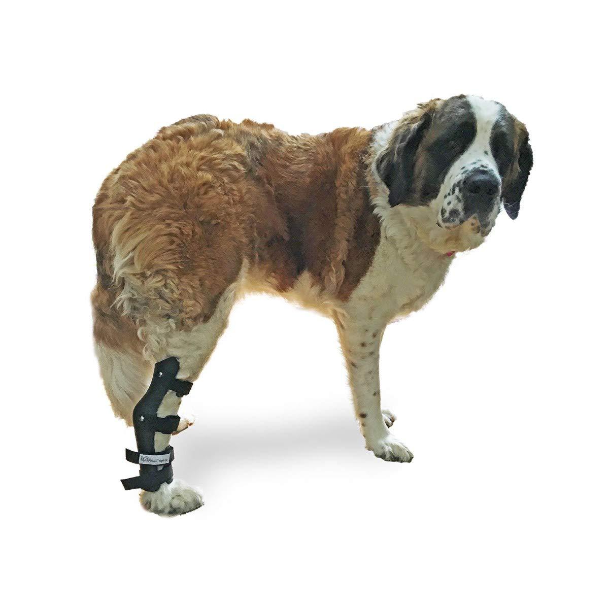 Walkin' Pet Splint for Dogs, Canine Hock Style Leg Splint with Foam Inserts for a More Custom Fit