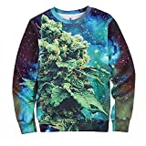 Unisex Hipster 3d Coral Weed Sweatshirt Hip Hop Pullover Hoodies Sweater (L)