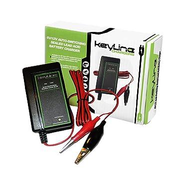 Amazon.com: Cargador de Batería de 6V/12V con voltaje ...