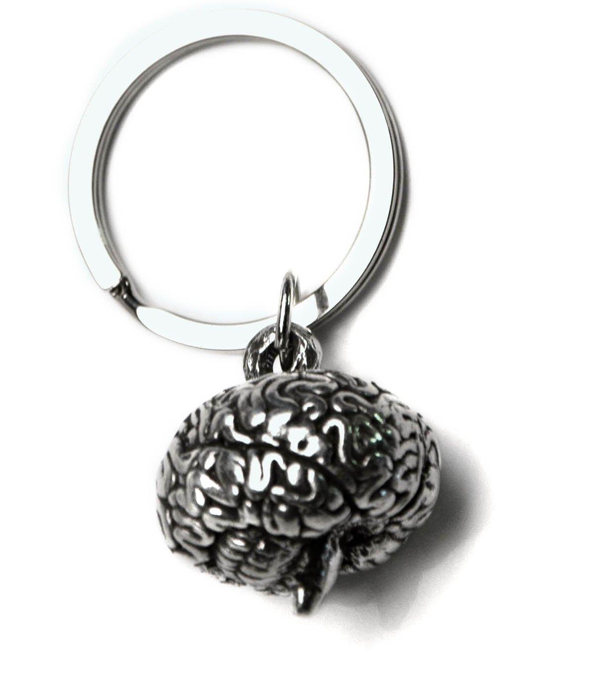 Amazon.com: anatomology 00030 Cerebro clave Cadena ...