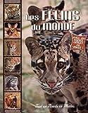 """Afficher """"Les félins du monde"""""""