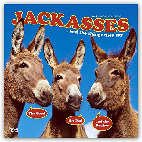 Jackasses 2019 12 x 12 Inch Monthly Square Wall Calendar, Donkey Humor