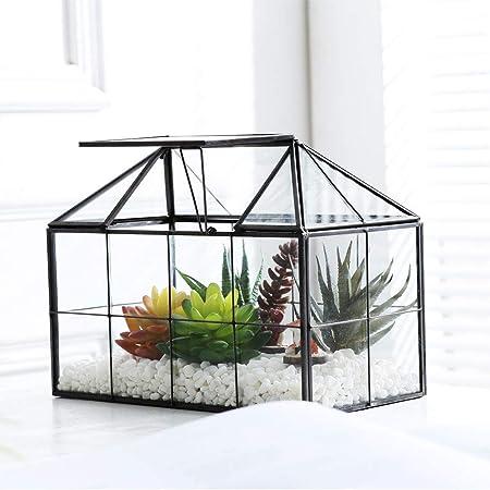 Amazon Com Purzest Glass Terrarium House Shape Close Glass