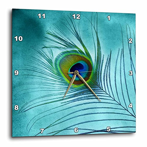 3 Animal Wall Clock - 3dRose DPP_211236_3 Peacock Feather on Turquoise Background Wall Clock, 15 by 15