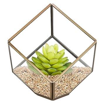 Moderne Geometrische Pyramide Pflanzenhalter Glas Terrarium ...