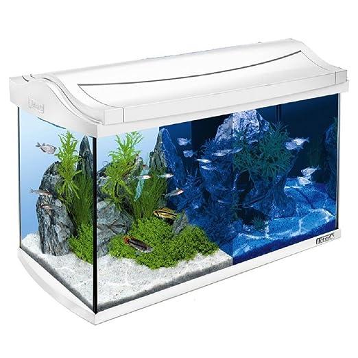 Juego completo de acuario para pecera, 60 L, color blanco: Amazon.es: Productos para mascotas