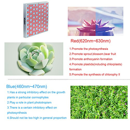 61GUCFgl9TL - 45W LED Grow Light, UNIFUN New Light Plant Bulbs Plant Growing Bulb for Hydroponic Aquatic Indoor Plants