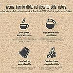 BANDOLERO-100-Compostabile-Made-in-Italy-100-Capsule-Compatibili-Nespresso-Caff-Cremoso-da-Coltivazione-Ecosostenibile-Aroma-Inconfondibile-per-Macchina-Macchinetta-Nespresso