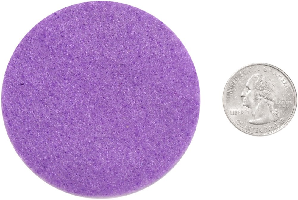 Playfully Ever After 4 Inch Purple 19pc Felt Circles