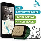 Kippy vita–GPS e Activity monitor per animali domestici–localizzatore GPS per cani e gatti–camo Sentinel