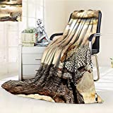 Digital Printing Blanket Resting Under Dramatic Cloudy Sky Africa Safari Wild Cats Print Brown Summer Quilt Comforter