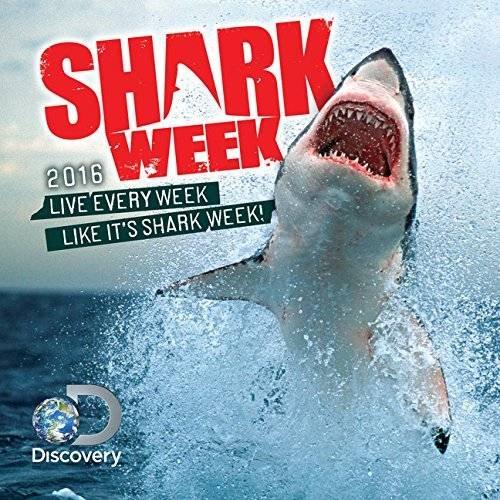 2015 shark calendar - 2
