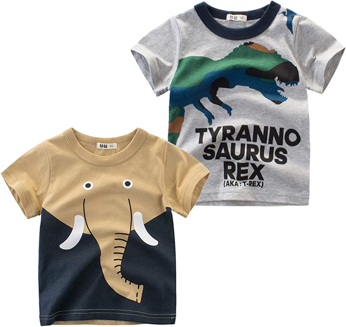 Oyoden Camisetas Manga Corta Niños Algodón Blusa Tops Bebé Verano 1-8 Años