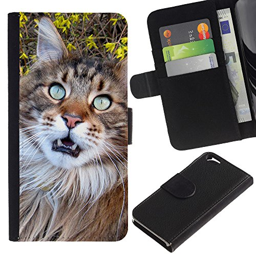 EuroCase - Apple Iphone 6 4.7 - American British longhair Maine coon - Cuir PU Coverture Shell Armure Coque Coq Cas Etui Housse Case Cover