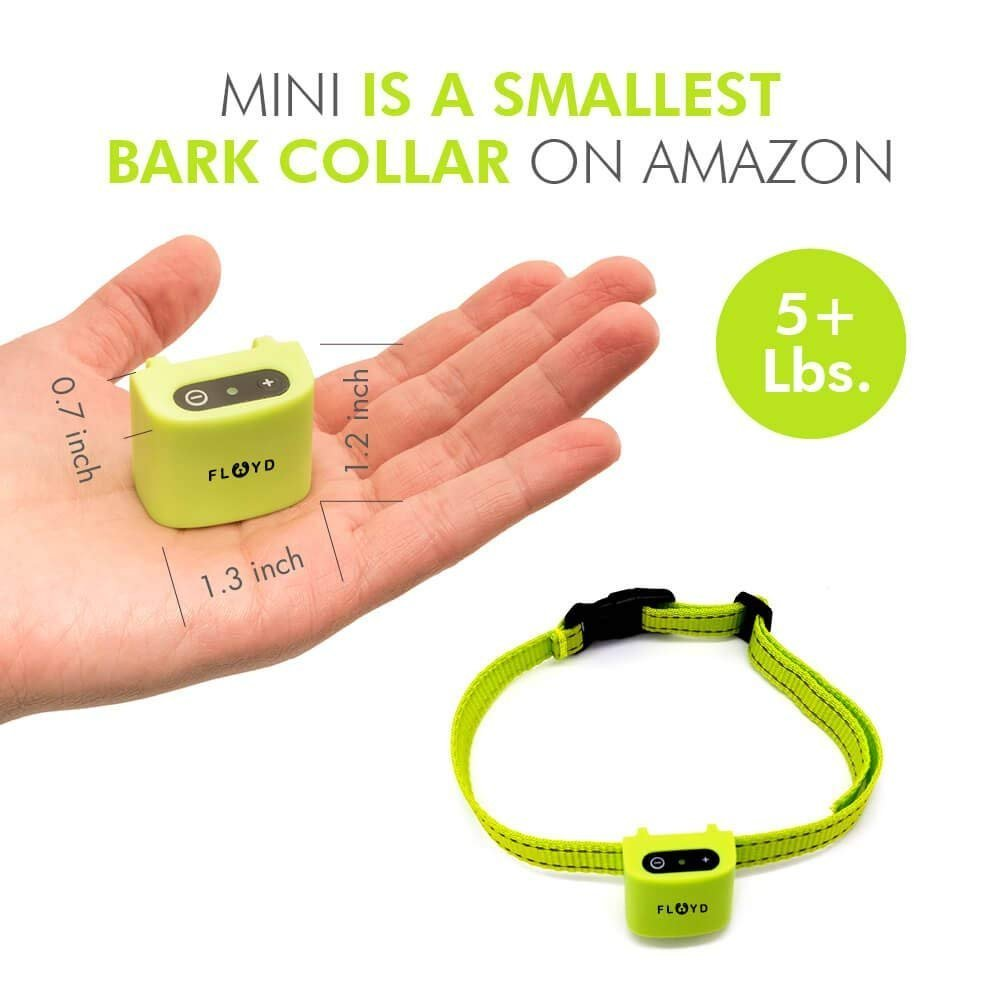 Floyd Small Dog Bark Collar for Tiny Puppies to Medium Dogs (5+lbs) – Rechargeable Vibrating Anti Barking Device – Smallest and Safest on Amazon - No Shock and No Spiky Prongs by Floyd (Image #2)