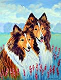 Caroline's Treasures 7086CHF Two Sable Shelties Canvas House Flag, Large, Multicolor For Sale