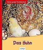 Das Huhn: Bilderbuch (Meine große Tierbibliothek)