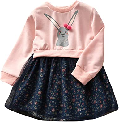 Dream Room Dresses Toddler Infant Kids Baby Longsleeve Girls Floral Flower Print Party Dress Outfits Clothes