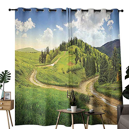 duommhome Apartment Decor Insulated Curtains Hillside Meadow Cloudy Sky Fence Near The Cross Road with Fir Trees On Both Sides Block Most Light and Ultraviolet Light W96 xL72 Green Blue