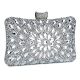Clocolor Evening Bags and Clutches for Women Crystal Clutch Beaded Rhinestone Purse Wedding Party Handbag(Silver)