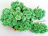 NAVA CHIANGMAI 100 Pcs Mini Rose 15-20 mm Mint