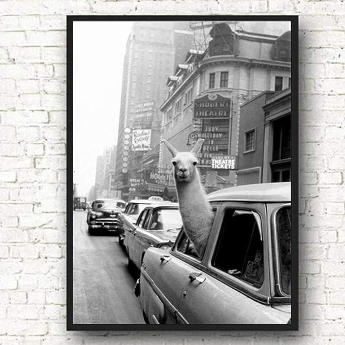 Llama en un Taxi de la Ciudad de Nueva York Arte de la Pared ...