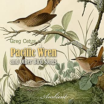 Amazon com: Pacific Wren and Other Bird Songs: Nature Sounds