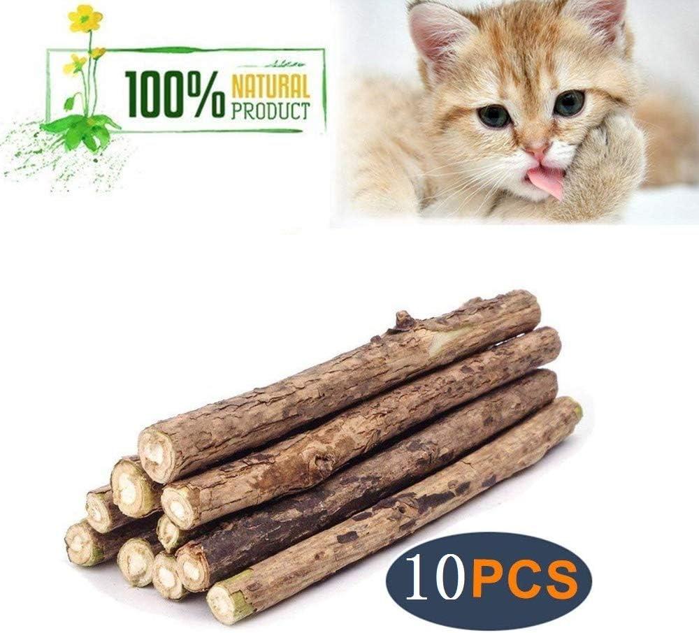 CNBC Palos de Hierba gatera para Gato, palitos de matatabi Silvervine, Herramientas de Limpieza Molar, Juguete para Masticar Gatos, Juguete Natural para Gatos, 10 Unidades: Amazon.es: Productos para mascotas