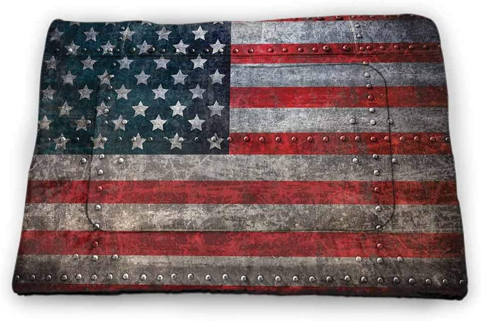 Nomorer Small Pet Food Mat American Flag Bite-Resistant Royalty Flag Textured US Backdrop on Damaged Board Plate Design Artwork Print 18